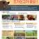아프리카돼지열병 선제적 대응 - 남은 음식물 관리 철저!