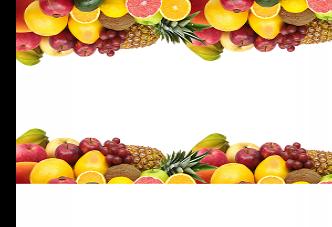 비타민의 기능과 결핍 증상